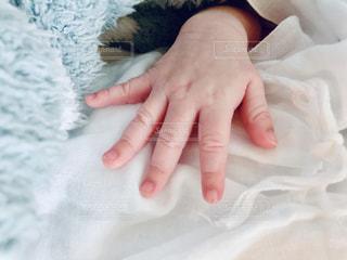 赤ちゃんの手の写真・画像素材[1563447]