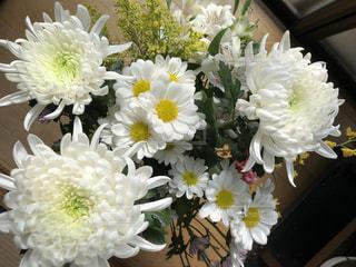 テーブルの上の花の花瓶の写真・画像素材[1683455]