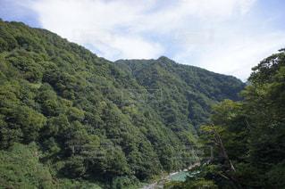 自然,風景,空,屋外,山,樹木,日中,山腹