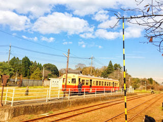 自然,紅葉,電車,小湊鉄道,秋空