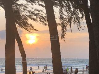 海,空,屋外,太陽,ビーチ,夕暮れ,海岸,光,ヤシの木,フィリピン,ボラカイ島