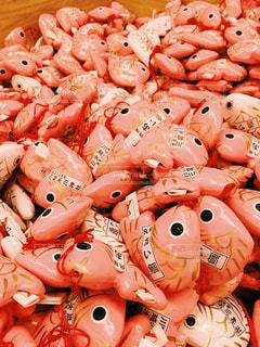 ピンク,ピンク色,桃色,pink,お出かけ,埼玉県,氷川神社