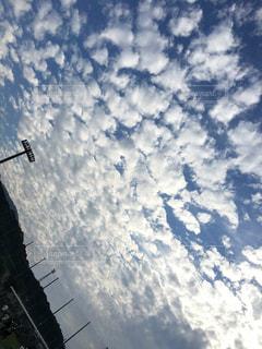 空,秋,スポーツ,うろこ雲,夏の終わり,秋空,雨のあと