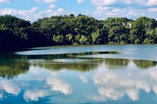 風景,空,緑,雲,青空,水面,秋空,服部緑地,水面に映る