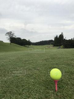 スポーツ,ゴルフ,紳士