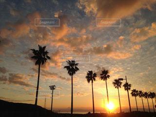 屋外,雲,夕暮れ,秋空