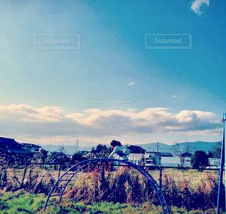 風景,青空,田舎,景色,子供,田園,ノスタルジー,秋空,稲刈り