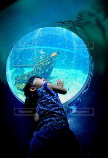 箱根園水族館の水槽を丸窓から見上げる女の子🐠の写真・画像素材[1564290]