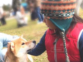 柴犬をなでている女の子の写真・画像素材[1593642]