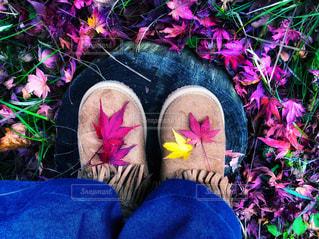 ブーツに紅葉の写真・画像素材[1800069]