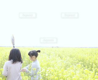 観光スポットの笠岡ベイファームという菜の花畑に立っている2人の女の子の写真・画像素材[1913972]
