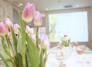 撮影スタジオにてパステル調のテーブルセッティングとピンクのチューリップの写真・画像素材[1951260]