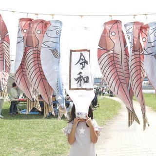 沼津の特産品の干物の鯉のぼりに新元号令和の写真・画像素材[2099627]