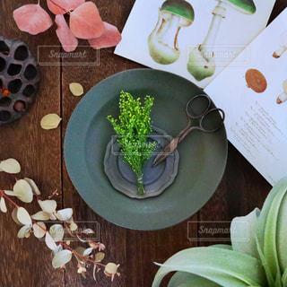 テーブルの上に植物と皿とアンティークのきのこの便箋の写真・画像素材[2102342]