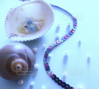 貝殻とパールの写真・画像素材[2128747]