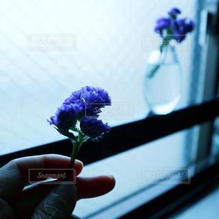 手に持った花のアップの写真・画像素材[2140873]