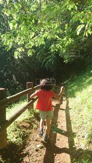 楽しそうに小躍りしながら森の中を歩く女の子の写真・画像素材[2199316]