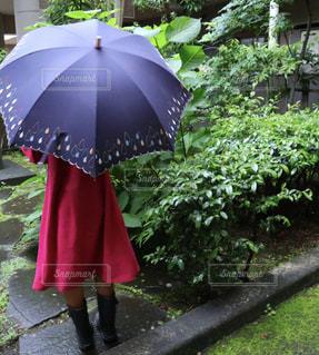 自然,雨,傘,屋外,ワンピース,後ろ姿,葉っぱ,紫,女の子,小物,紫陽花,長靴,雫,梅雨,雨降り,草木,かさ,カサ
