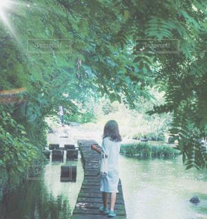 自然,屋外,緑,ワンピース,水,葉っぱ,川,女の子,光,樹木,人物,人,後姿,フィルム,フィルム写真,飛び石,フィルム風,フィルムフォト