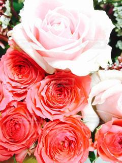 ピンク,花束,バラ,ピンクの花,ピンクの花束