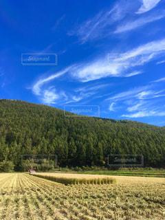 風景,空,雲,青空,山,景色,田んぼ,稲,秋晴れ,農家,秋空,稲刈り,コンバイン