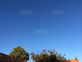 空,晴れ,青空,青,水色,秋晴れ,ブルースカイ,秋空,抜けるように青空,雲一つない青空