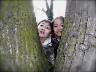 木,屋外,子供,笑顔,夢,兄妹,ポジティブ,目標,笑み,ひょっこりはん