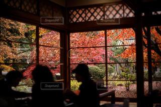 窓越しに秋の風景を感じながらお食事…の写真・画像素材[1597956]