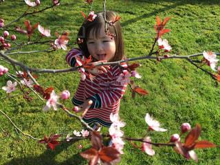 花のつぼみと咲いた花を見て、笑顔の女の子の写真・画像素材[1615681]