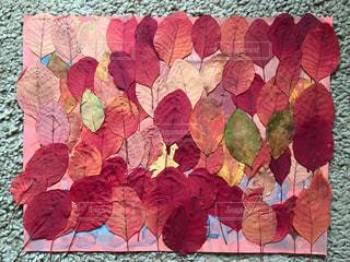 カラフルな落ち葉たちの写真・画像素材[1615951]