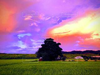 空,夕日,雲,夕暮れ,景色,神秘的,田園,秋空