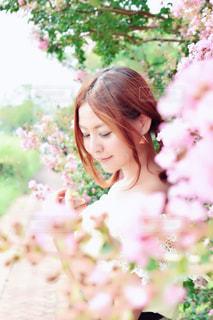 春風を感じての写真・画像素材[1490474]