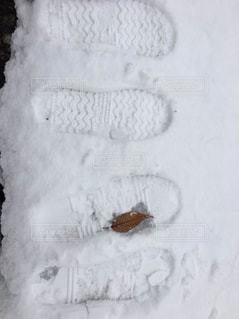 歩み…止まっても又一緒に。の写真・画像素材[1587151]