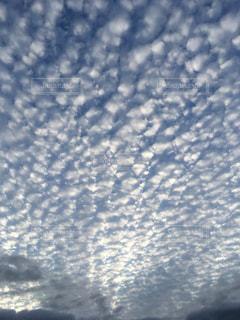 空,秋,うろこ雲