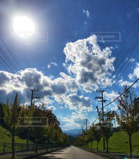 空,雲,樹木,並木道