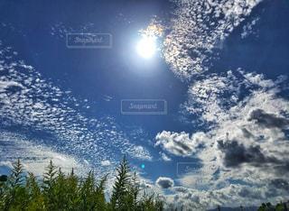 雲,青空,うろこ雲,秋空