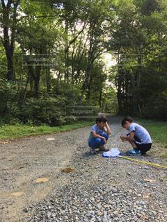 子ども,自然,森林,自由,虫取り,兄弟,自然とのふれあい