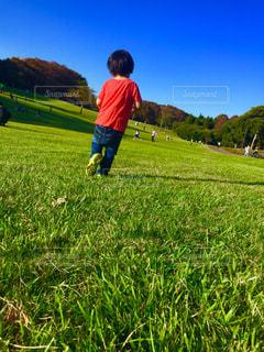 空,公園,紅葉,芝生,子供,人物,人,男の子,秋空