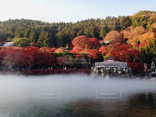 空,秋,紅葉,箕面,勝尾寺