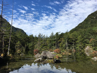 自然,空,屋外,池,樹木,秋空,上高地,明神池