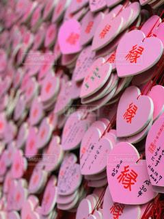 ピンクの花の群しの写真・画像素材[2264387]
