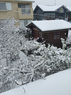 雪に覆われた家の写真・画像素材[1681197]