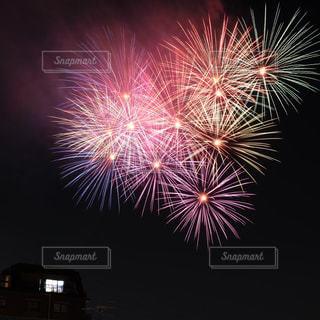 夜空の花火の写真・画像素材[1318668]