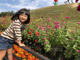 花の写真・画像素材[1572037]