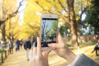 携帯電話を持つ手の写真・画像素材[1650638]