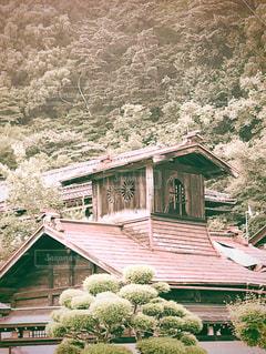背景に木がある家の写真・画像素材[2915294]