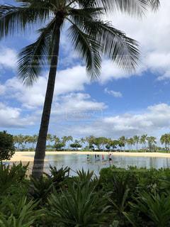 自然,海,空,スポーツ,景色,ハワイ,スタンドアップ・ヨガ