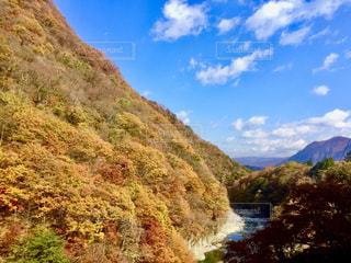 自然,風景,秋,紅葉,もみじ,美しい,一眼レフ,渓流,秋空,景観