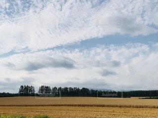 空,秋,雲,北海道,畑,秋空