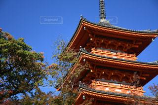 清水寺の写真・画像素材[1667905]